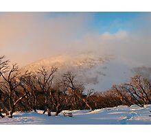 Feathertop backcountry Photographic Print