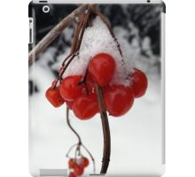 Snow Berries iPad Case/Skin