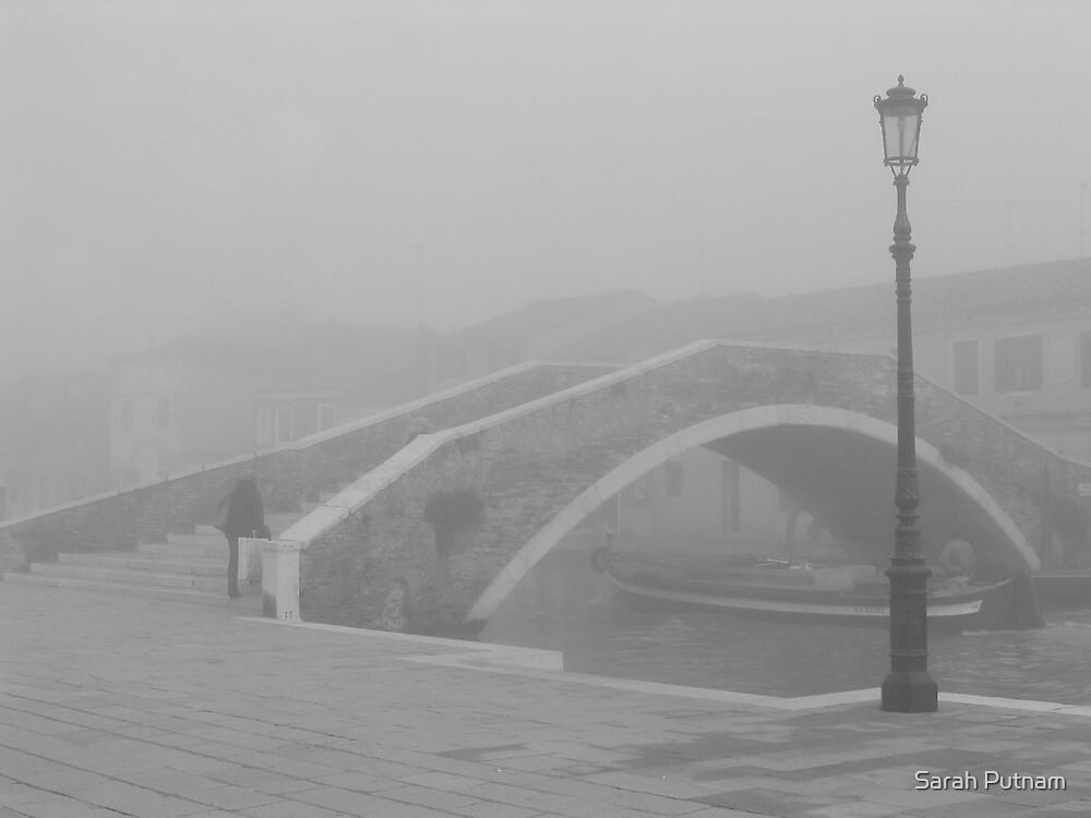 A Misty Vision by Sarah Putnam