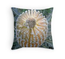 Banksia beauty Throw Pillow
