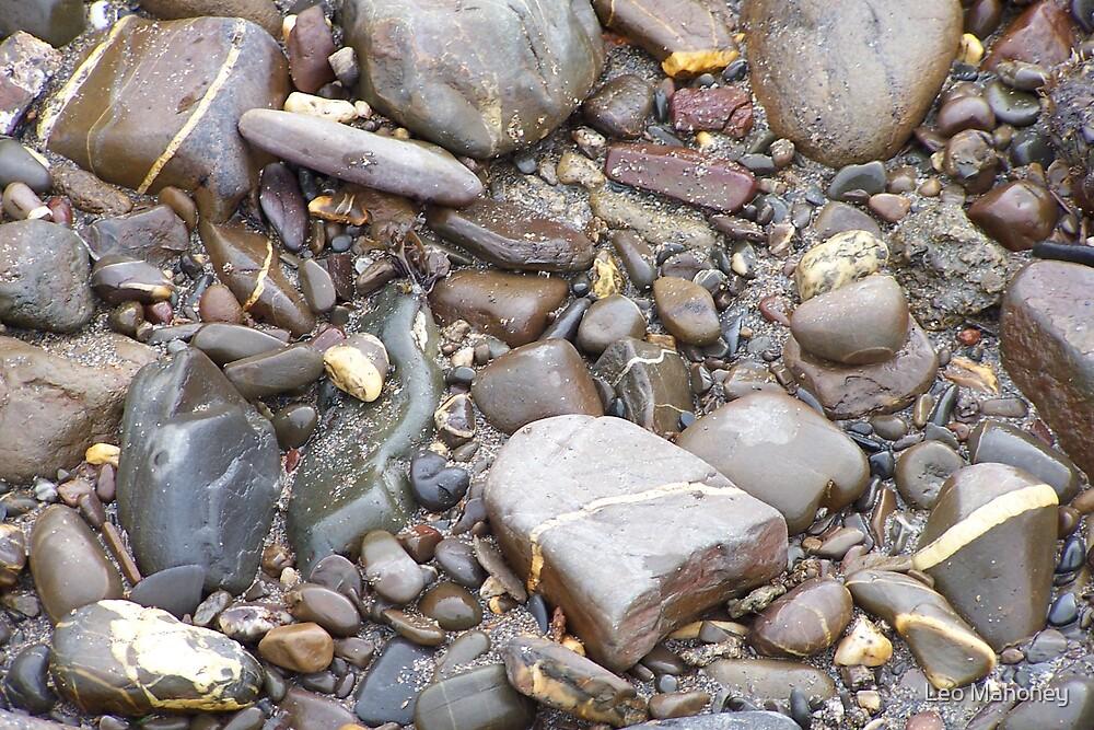 Pebbles by Leo Mahoney