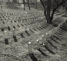 Arlington Cemetery by wyllys