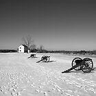 Bull Run Cannons by wyllys