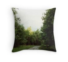 The Path to Rob Roy's Hideout Throw Pillow