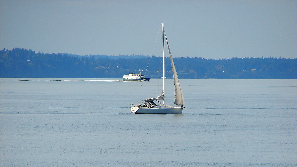 Sailing in Puget Sound 312 by jduffy111