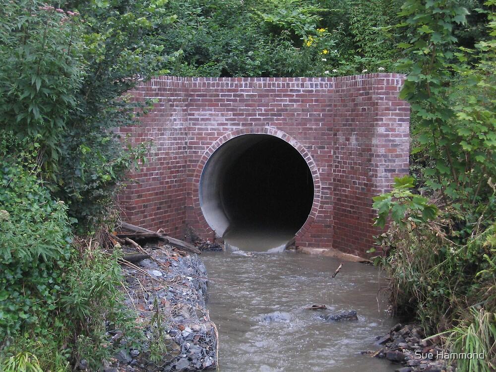 Brick Tunnel by Sue Hammond