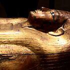 Golden sarcophagus by annalisa bianchetti