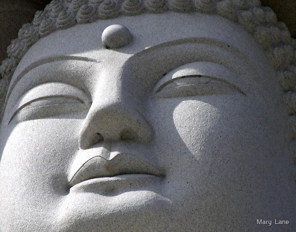 Buddha by Mary  Lane