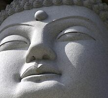 Buddha by Mary  Lane