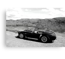 Cobra in the highlands Canvas Print