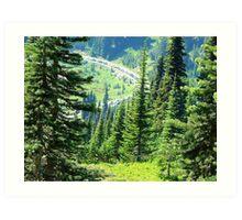 Mount Rainier 589 Art Print