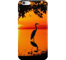 Heron at Sunset  iPhone Case/Skin
