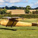Slingsby T.6 Kirby Kite BGA310 by Colin Smedley