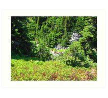 Mount Rainier 586 Art Print