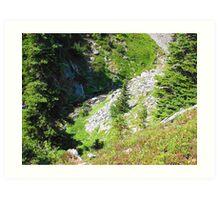 Mount Rainier 585 Art Print