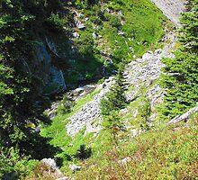 Mount Rainier 585 by jduffy111