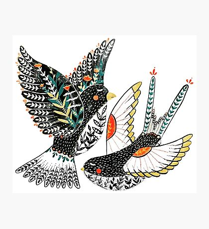 Sparrow & Swallow Photographic Print