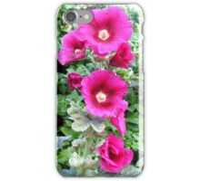 Hollyhocks France iPhone Case/Skin
