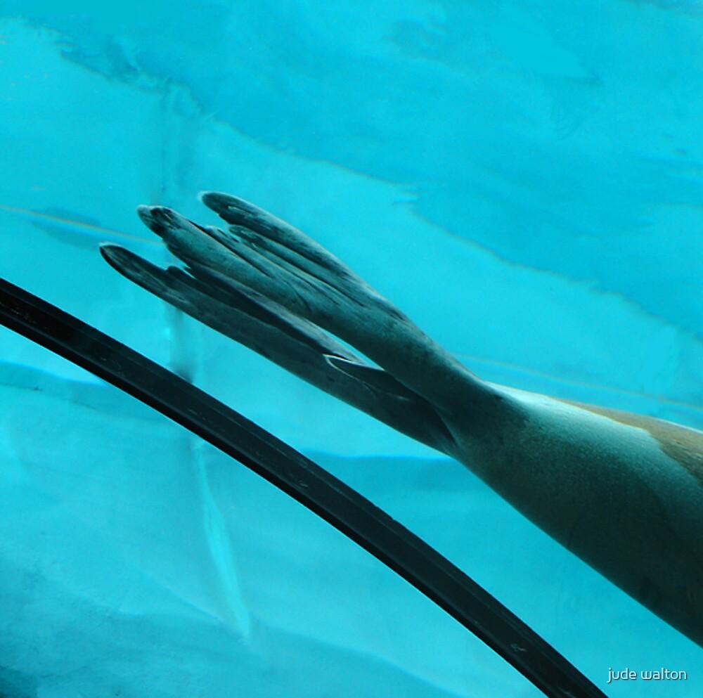 Flippers by jude walton