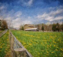 Stone Barn On A Spring Morning by Lois  Bryan