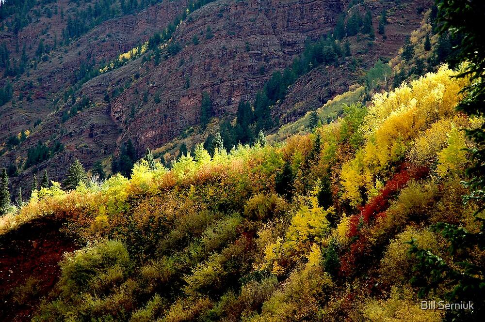 Maroon Canyon -Autumn by Bill Serniuk