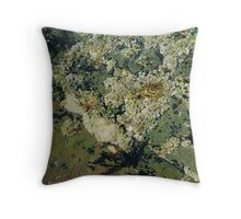 Rockpools 2 Throw Pillow