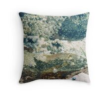 Rockpools 6 Throw Pillow