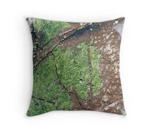 Rockpools 9 Throw Pillow