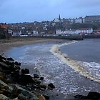 Whitby Harbour by EarlCVans
