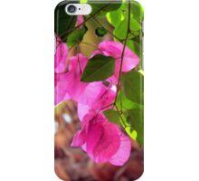Bougainvillea in Aguilas, Murcia iPhone Case/Skin