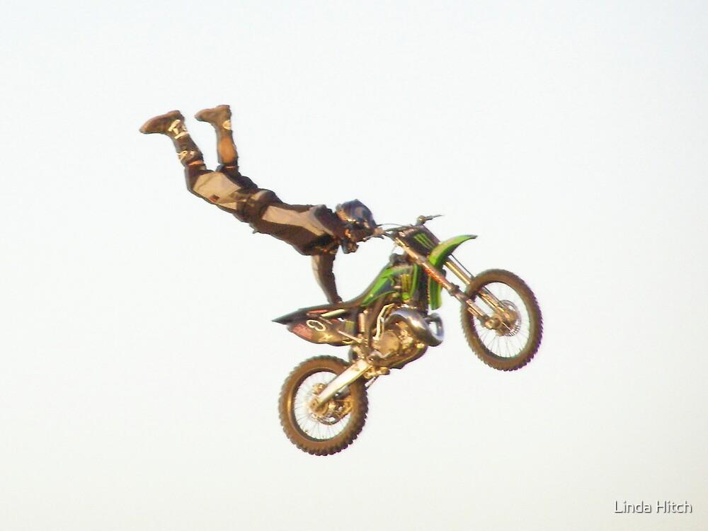 flying high by Linda Hitch