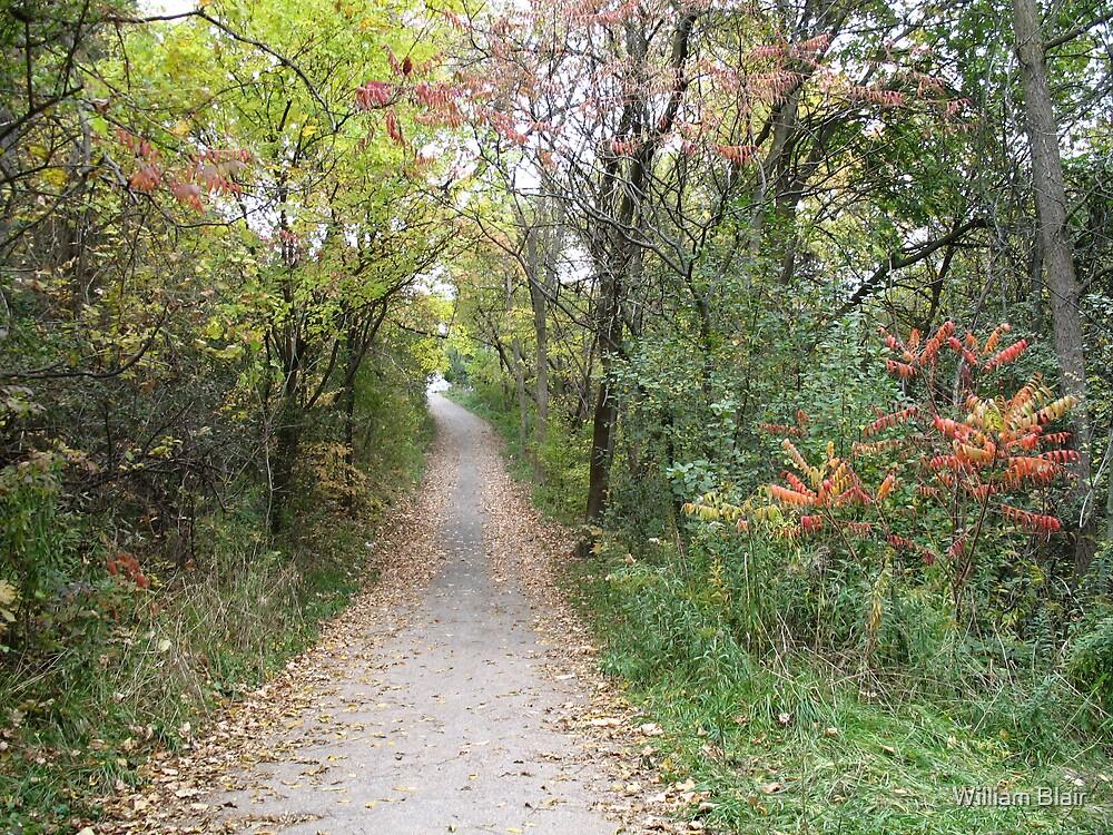 Autumn Path by William Blair