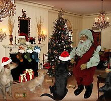 *•.¸♥♥¸.•*SANTA'S ARRIVAL CANINES DELIGHT CHRISTMAS PICTURE & CARD*•.¸♥♥¸.•* by ✿✿ Bonita ✿✿ ђєℓℓσ