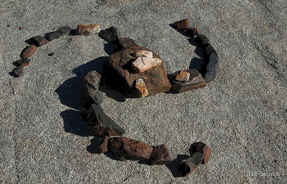 Rock Art by Bill Serniuk