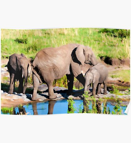 Elephants at a Watering Hole Poster