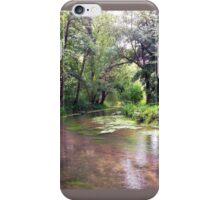Essone, France - river nature walk iPhone Case/Skin