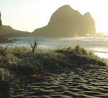 Wild Beach Piha (Auckland, NZ) by Jasna Bogdan