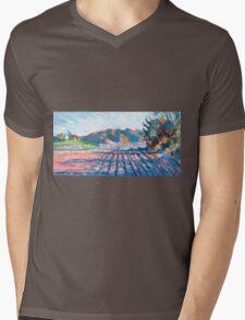 Little Compton II Mens V-Neck T-Shirt