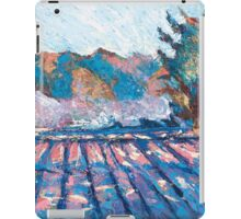 Little Compton II iPad Case/Skin
