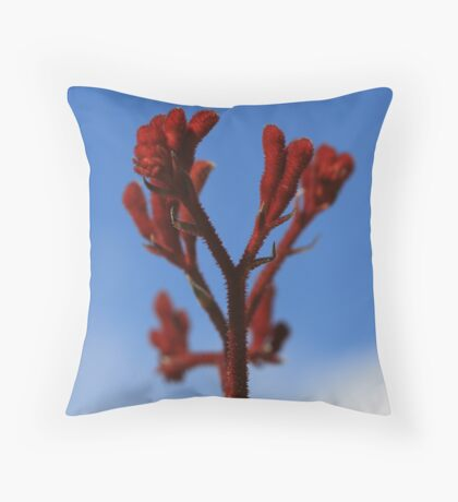 Paws for Effect Throw Pillow
