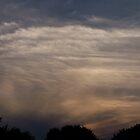 Sunset Behind a Tree by Xarran