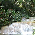 Jamaican Waterfall by Xarran