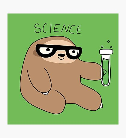 Science Sloth Photographic Print