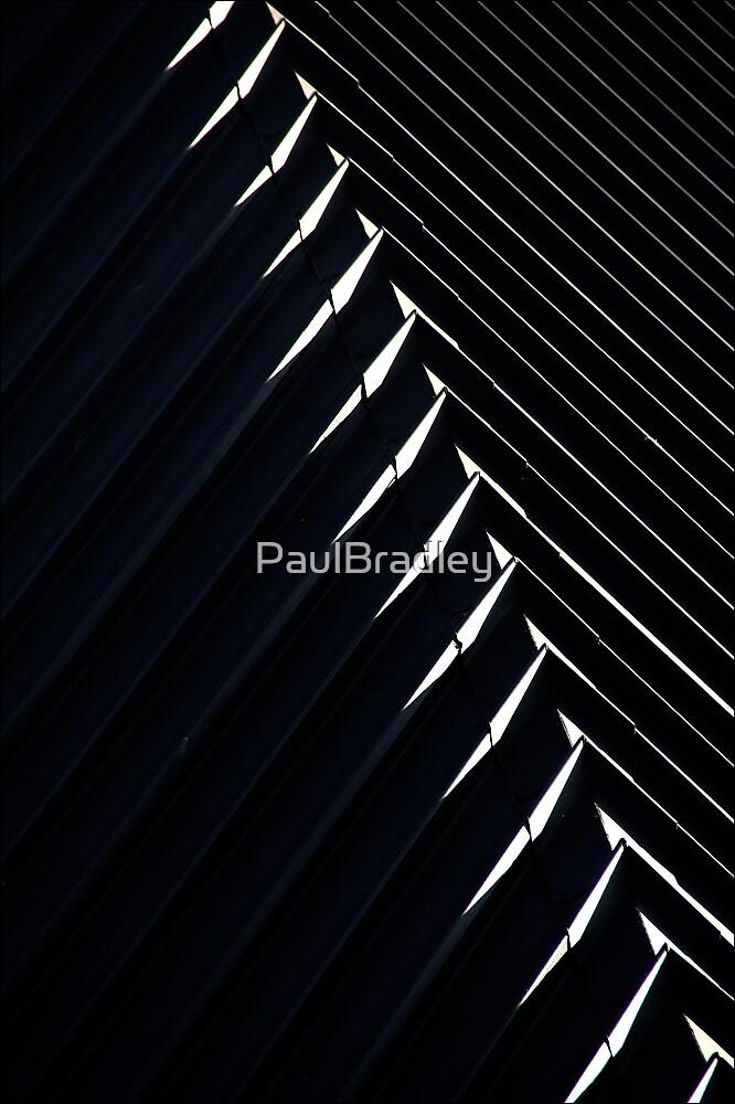 Ridge by PaulBradley