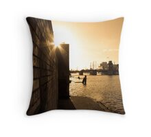Amstel river Throw Pillow
