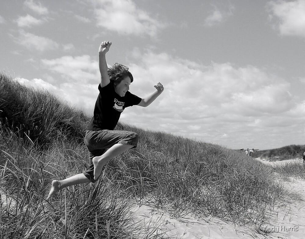 Leap of Faith by Andy Harris