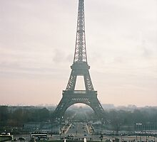 Paris In The Spring   by David White