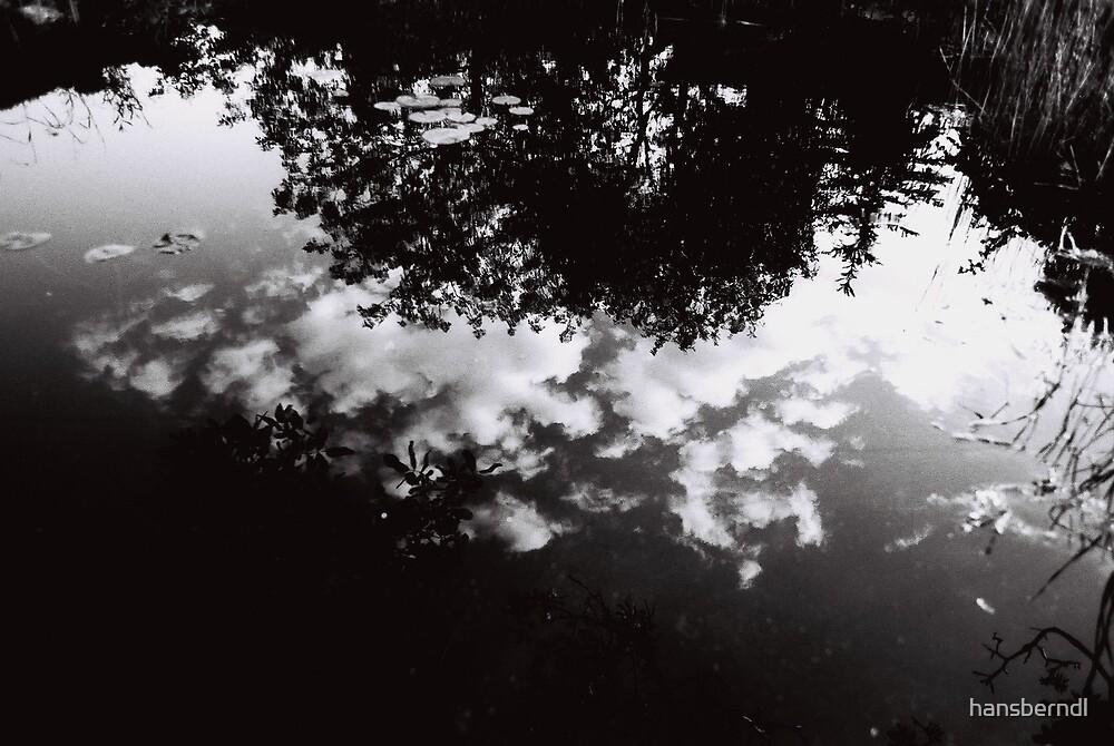 Reflexions by hansberndl