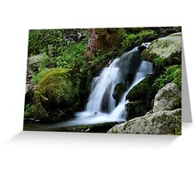 Whispering Waters Greeting Card