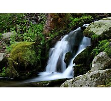 Whispering Waters Photographic Print